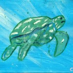 Carla Fernandez Mora. La tartaruga